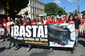 Support from Spain: ENOUGH! no more bullfights. The Hispanic network Animanaturalis.