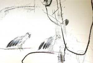 Raystede 2 birds (c) Ann Johnson