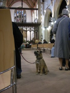 attention st martins animal blessing Oct2013 011