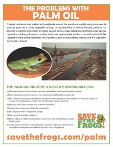 Flyer-Palm-Oil-Problems-500