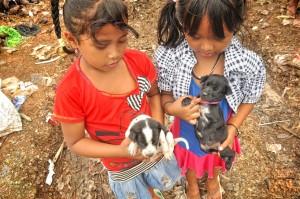 IKA_4_Ika__kadek_with_both_puppies