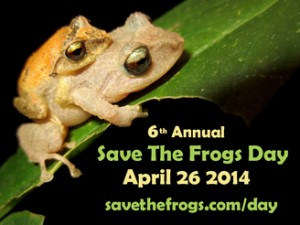 Icon-Save-The-Frogs-Day-Current-328