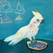 Little Corella, copyright Ann Johnson, reproduced here with thanks to the artist.