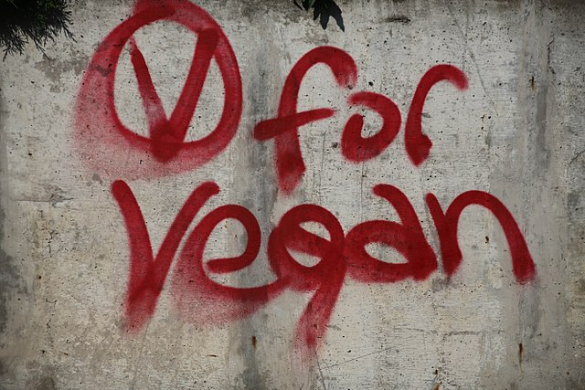"Member's report: APPG considers, ""is it time for a legal definition of veganism?"""