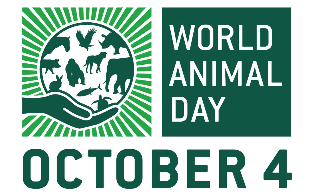 QUAKER CONCERN FOR ANIMALS AND WORLD ANIMAL DAY 4TH OCTOBER 2018