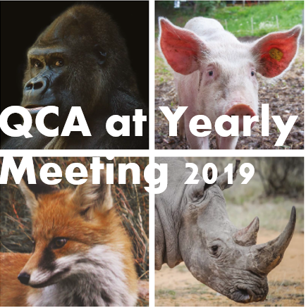 Annual General Meeting and more… QCA at YM2019