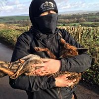An interview with Severn Vale Hunt Saboteurs